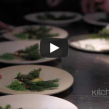 Noma, Worlds Best Restaurant, Bittman interviews Redzepi
